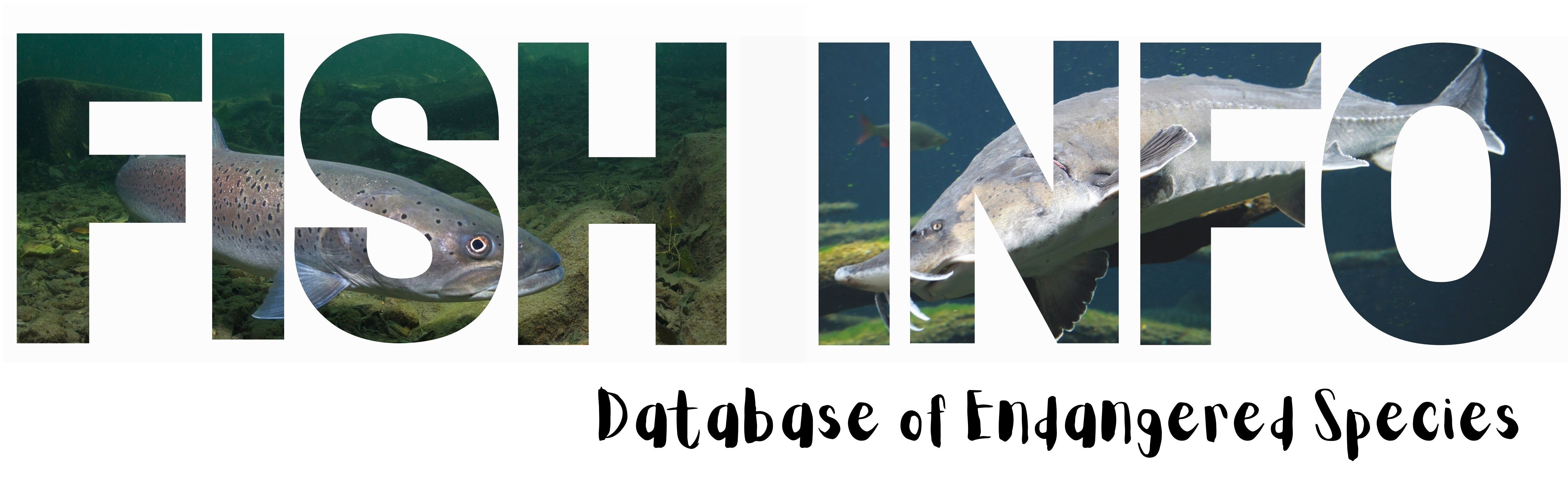 Fish Info - Database of Endangered Species