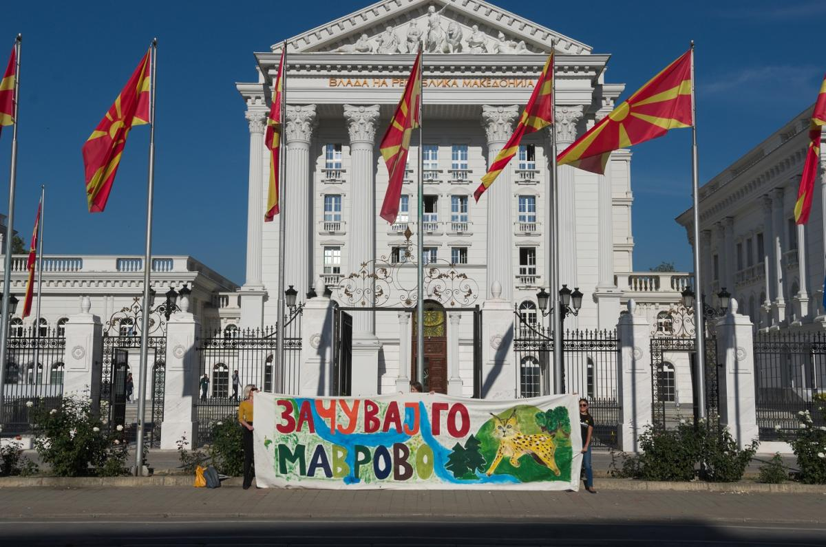 Protest activity in Skopje for the protection of the Mavrovo NP © Eko-svest