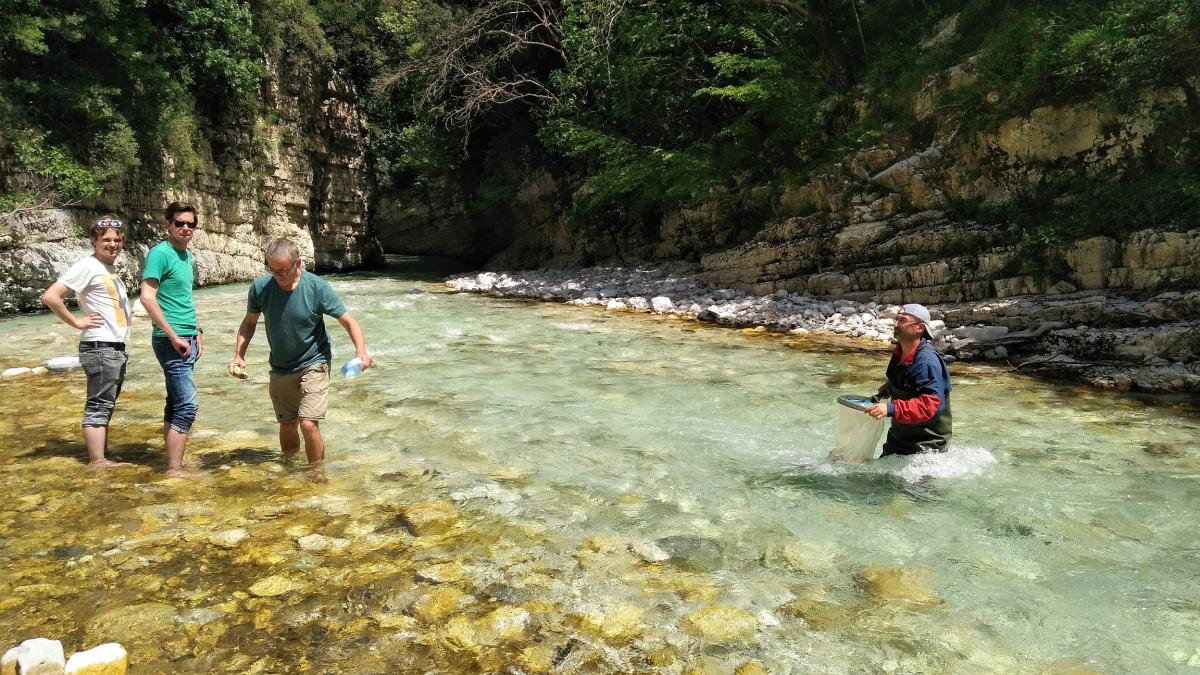 "The crystal clear water of the Bence, here during the ""Scientists for Vjosa"" research week in April 2017. Scientists were very pleased with the abundance of indicator species for particularly clean streams. © Cornelia Wieser"