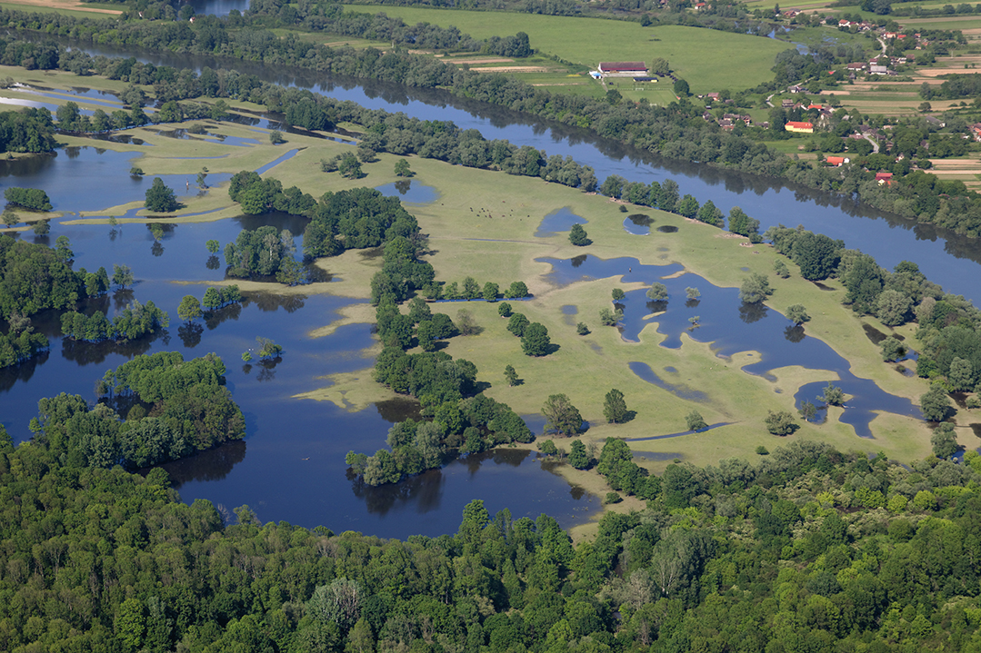 Natural flood prevention: floodplains work like a sponge and reduce downstream floods. Photo: Goran Šafarek