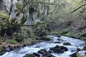 Mala Fluss: Mala und Radika wären beide von der Wasserabführung und dem täglichen Schwallbetrieb des Wasserkraftwerk Boskov Most betroffen.