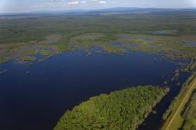 Sava's natural floodplains at Lonjsko Polje Nature Park.