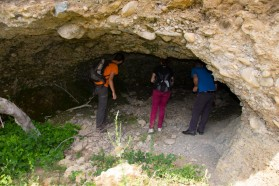 Bats working group: exploring caves.