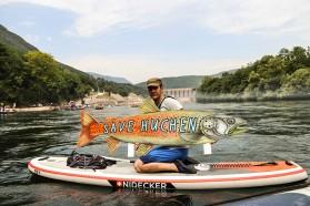 Huchen Protest auf der Drina Regatta. Die Drina ist der wichtigste Fluss für diese global bedrohte Fischart. Dennoch sind hier neun Staudämme geplant