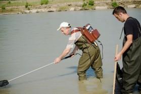 Prof. Spase Shumka while electrofishing.