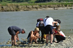 Macrozoobenthos group looking for small insects.