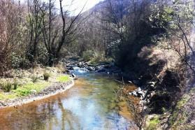 """Fluss Rupska im Süden Serbiens. Rupska ist einer der saubersten Flüsse in Serbien und ist ebenfalls durch ein Wasserkraftwerk bedroht. Der """"Rupska Reka"""" Verein versucht dies zu verhindern."""