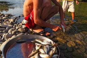 Fishing as livelihood on Mat's upper reach.
